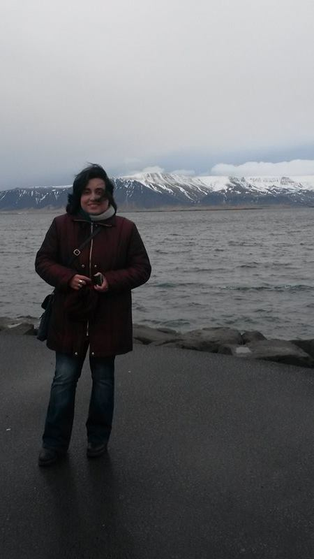 Munții Esja și oceanul