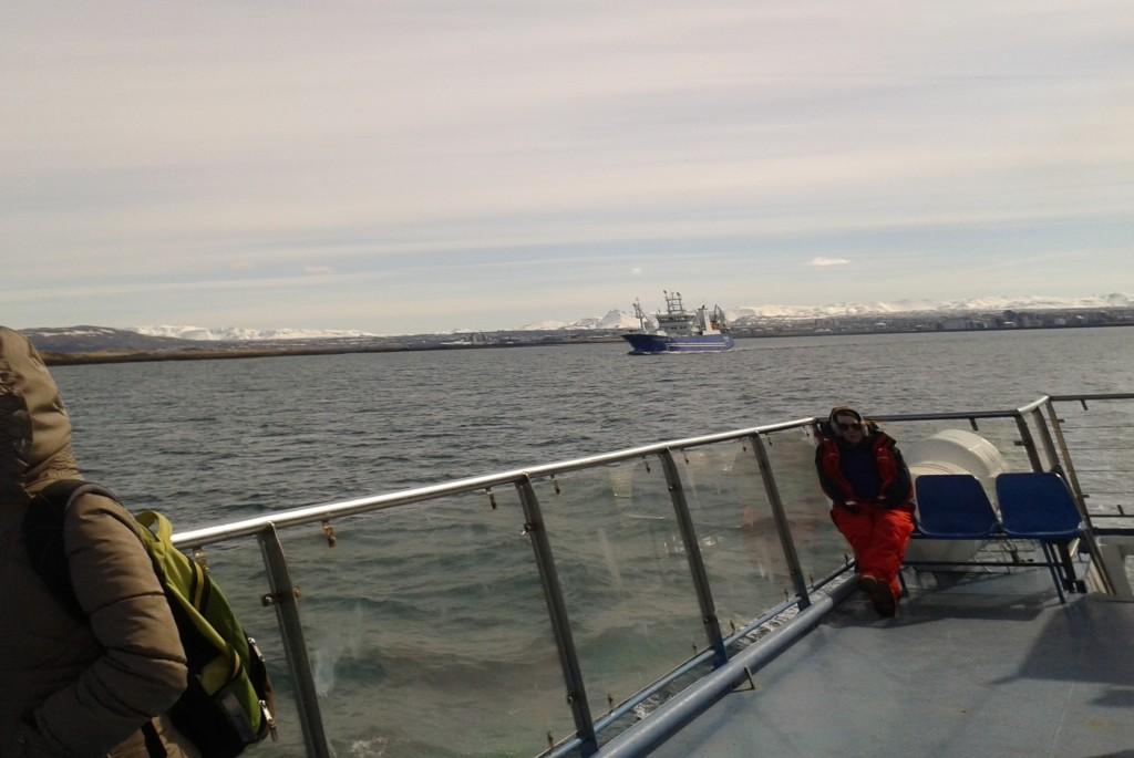 Golful Faxafloi: imagine de pe puntea vaporașului