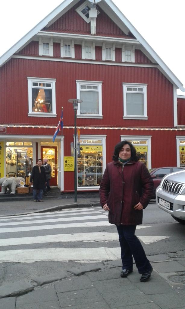 Reykjavik: districtul istoric