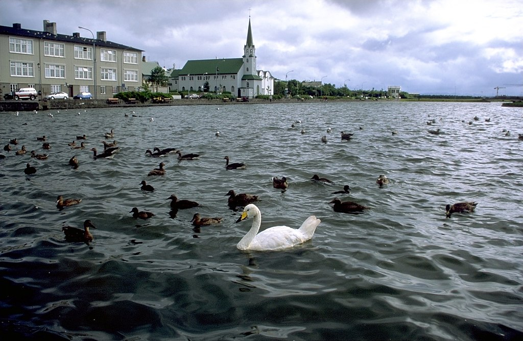 Lacul Tjornin